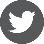twitter grey icon